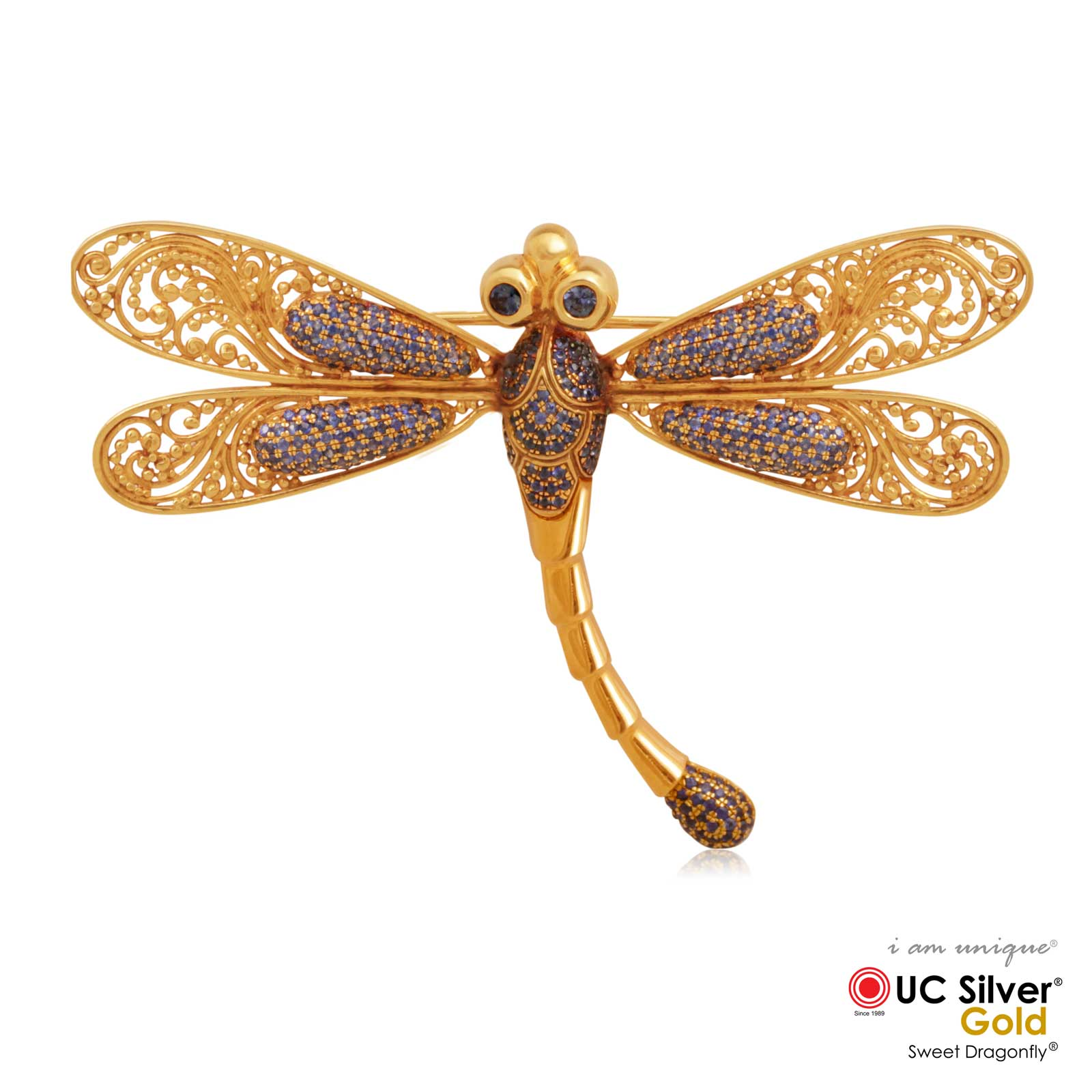 Dragonfly 020